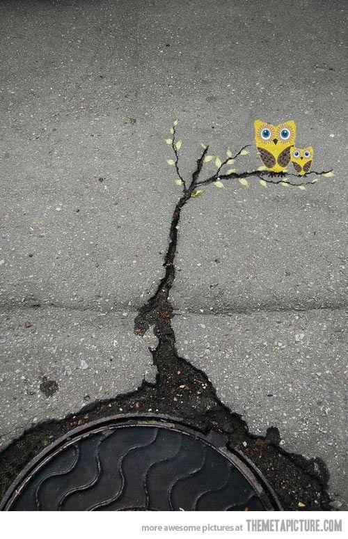 Mä rakastan tällaista ajattelua. rososta asfaltista kadulla voi löytyä taidetta. Siellä se on,katso vaan..