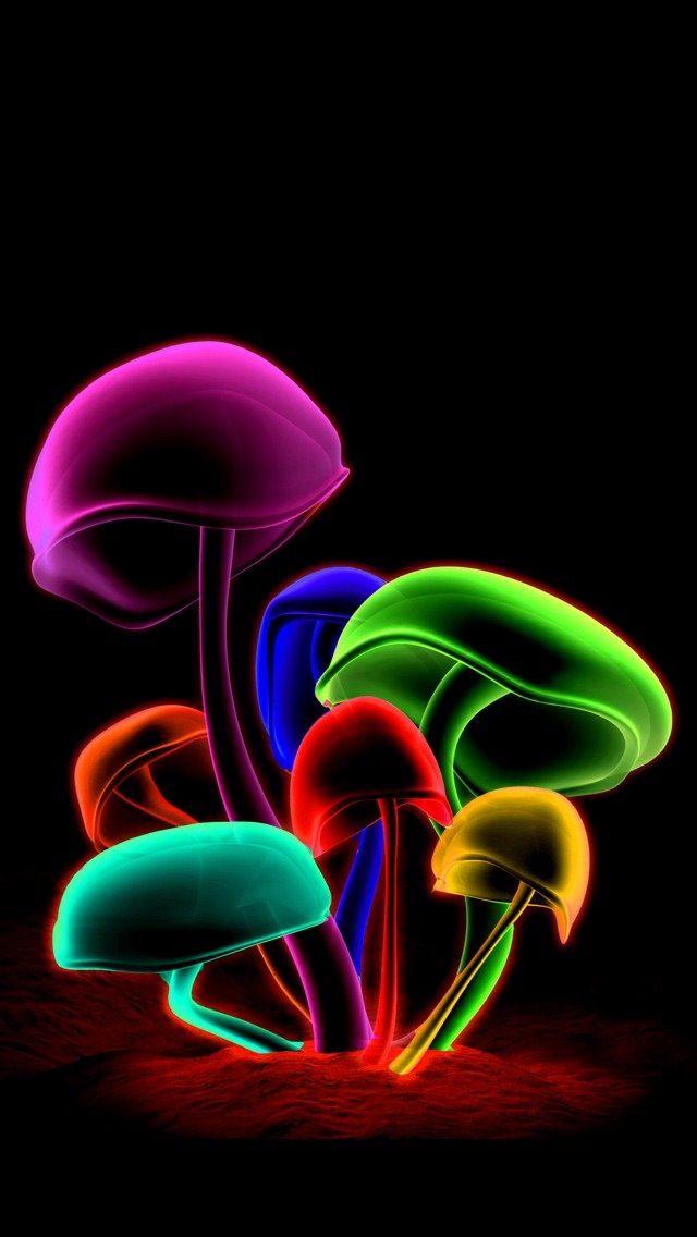 Fluorescent La Vie En Couleur Iphone Wallpapers De Toutes Les Couleurs