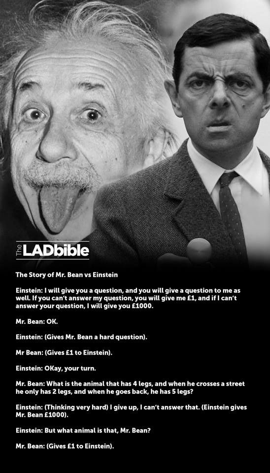 the story of mr bean vs einstein 2funny pinterest. Black Bedroom Furniture Sets. Home Design Ideas