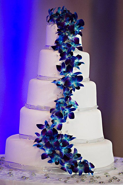 Fresh Blue Dendrobium Orchids On My Wedding Cake