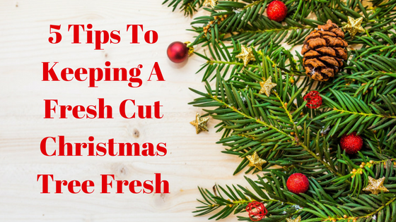 christmas tree - How To Keep Christmas Tree Fresh