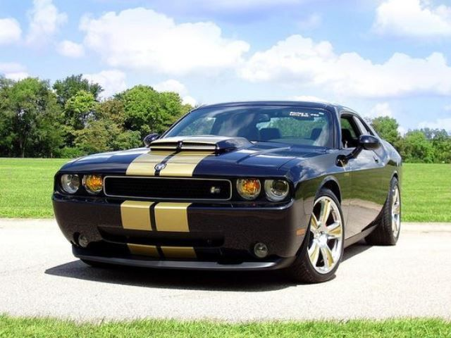 2009 Dodge Challenger Srt8 Awesome Black Gold Dodge