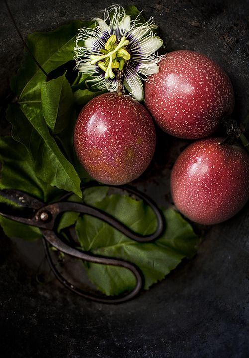 -Maracujá - fruto e flor - fruit de la passion..... Passion fruit