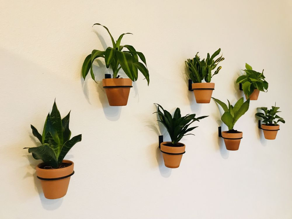 Indoor Plant Wall Indoor Plant Wall Plant Wall Wall Mounted Planters