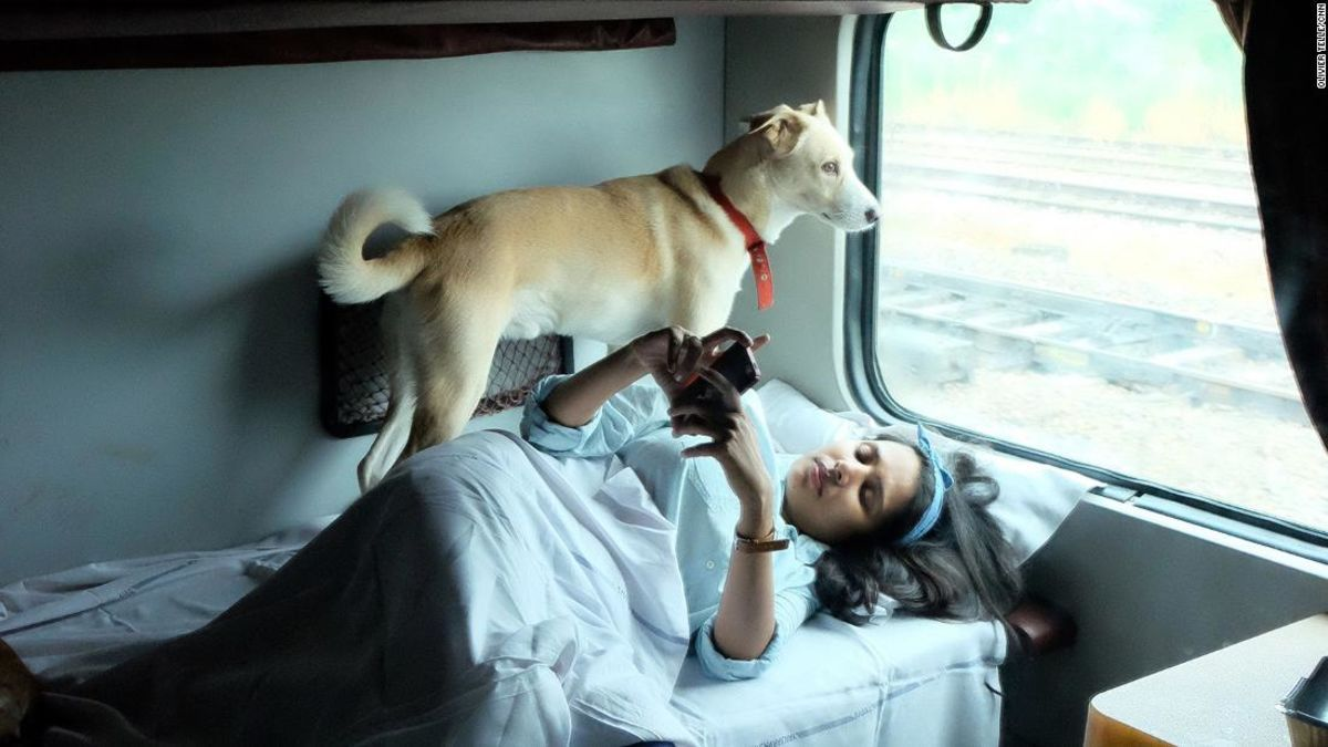 India By Train With Dogs One Couple Shares Their Story Pet
