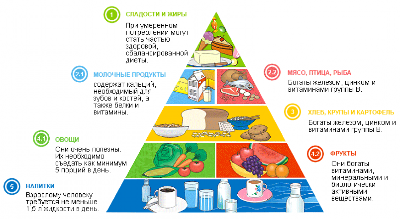 белки жиры и углеводы для похудения