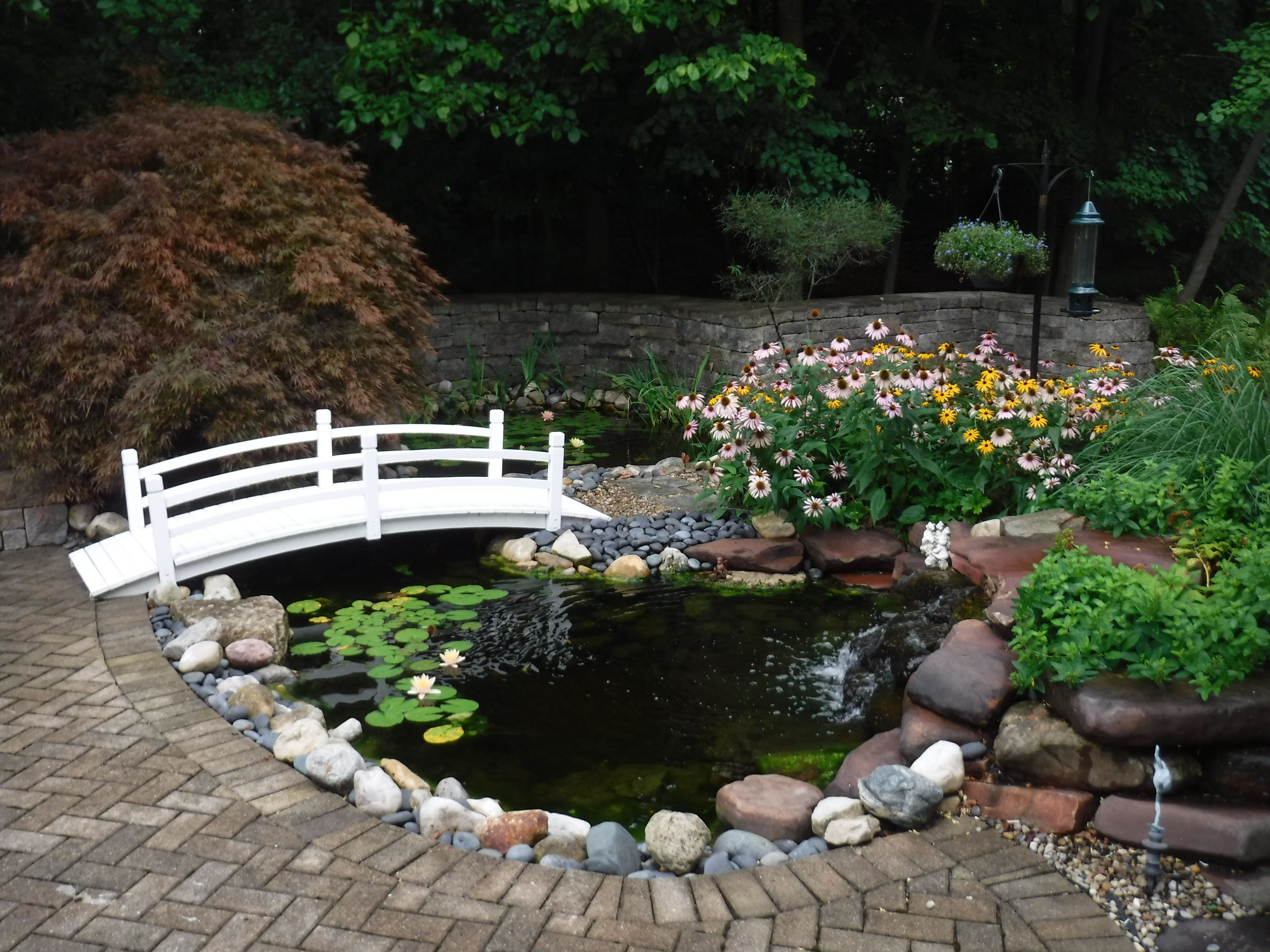 14 Awesome Ideas How to Build Backyard Pond Landscaping ...