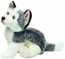 Nat and Jules Plush Toy, Husky, Large. Available at OurPamperedHome.com