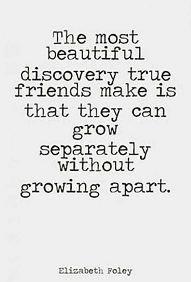 101 Friendship Quotes To Share With Your Best Friend, Human Diary And Other Half