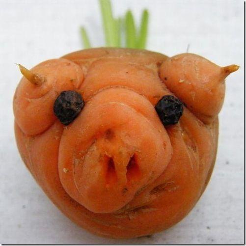 Weird shaped vegetables