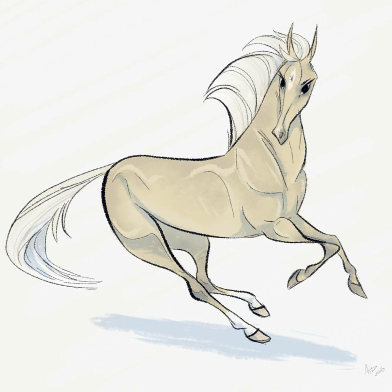 Daily Horse Drawings