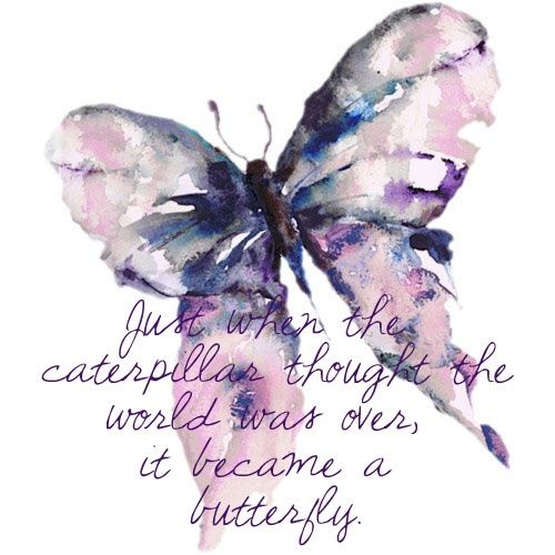Pin By Ari Dhani On Sketch Drawing Butterfly Quotes Butterfly