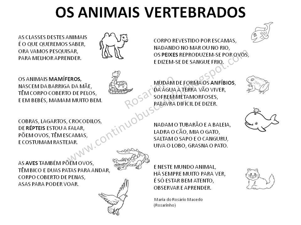 Porque O Dia Do Animal Esta A Chegar Aqui Ficam Duas Poesias Para