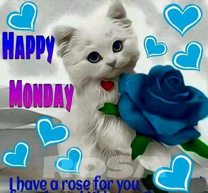 Image result for lovely monday