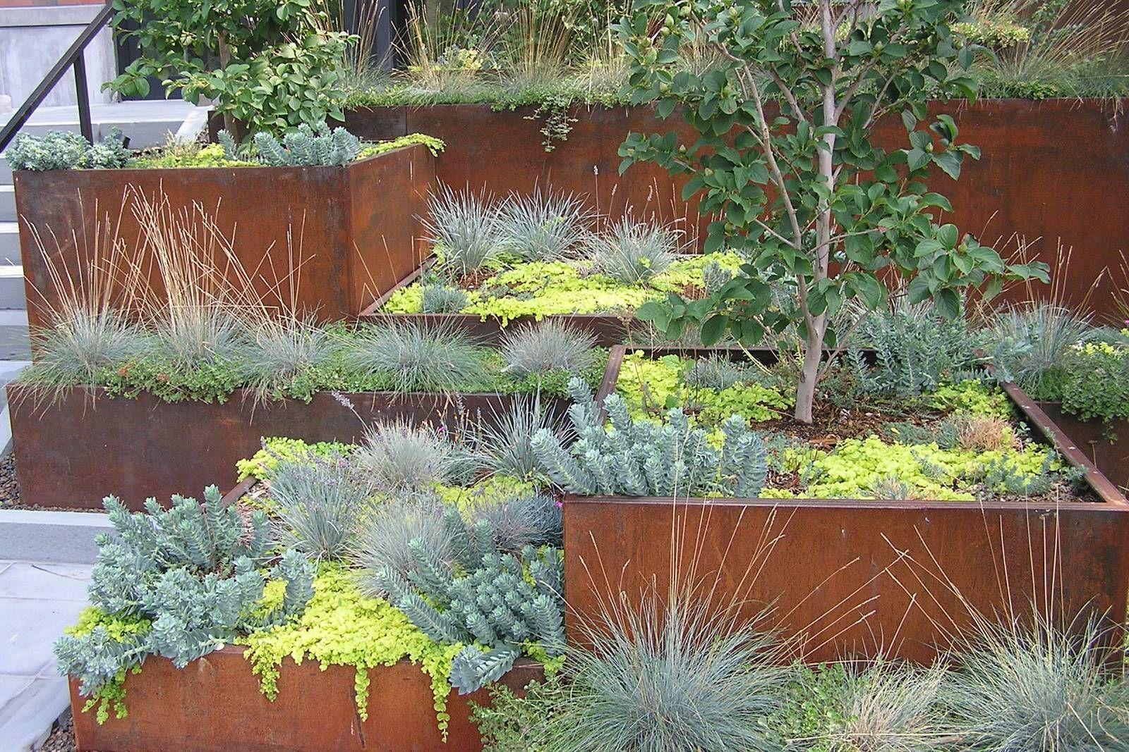 Future Green Studio Carroll Street Mta Plaza Brooklyn In 2020 Landscape Design Garden Design Modern Landscaping