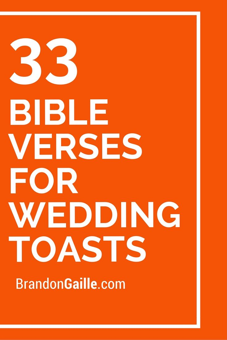 Wedding toasts - congratulations and farewell to the newlyweds 17