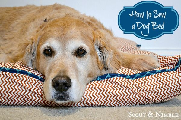 Scout and Nimble: How to sew a Dog Bed | diy.tutorials | Pinterest