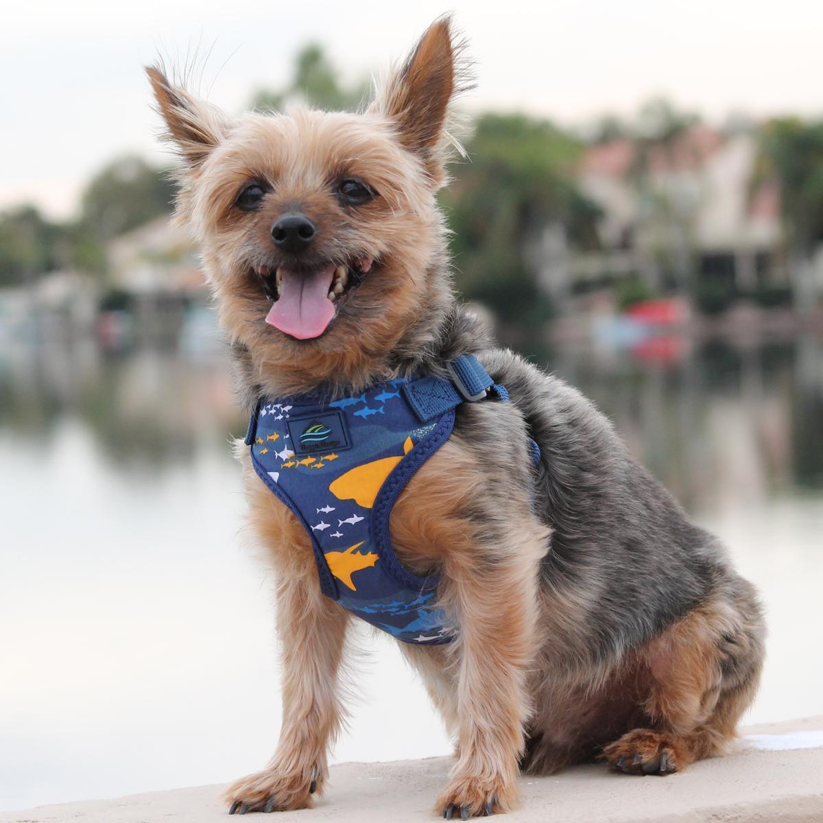 Cute Wrap Snap Island Sharks Dog Harness With Mesh Lining Dog