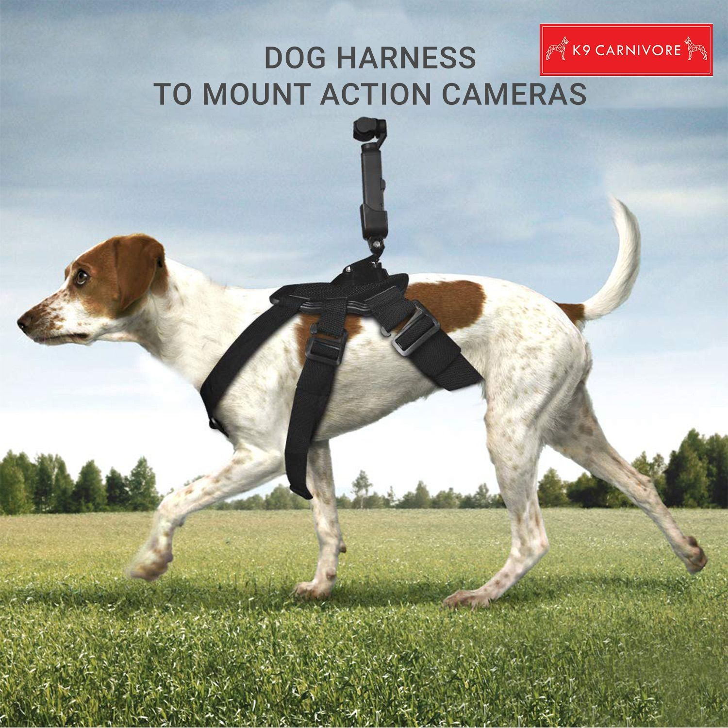 Pin by K9 CARNIVORE on Dog harness, Pet