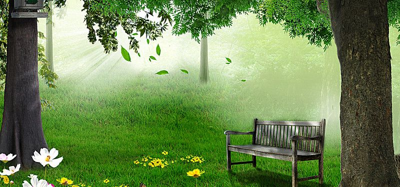 Natural Forest Green Background Natural Background Nature Green Backgrounds