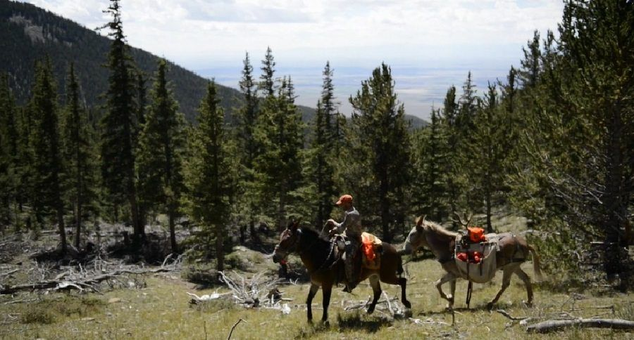 Colorado Hunting Atlas A Virtual Scouting Tool From Colorado Parks And Wildlife Colorado Hunting Hunting Elk Hunting