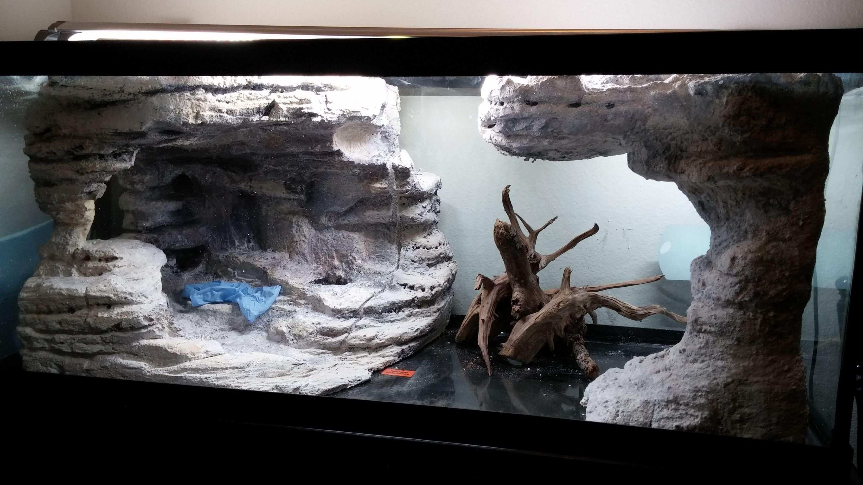 75 gallon diy background thingy small update 2 13 the for Aquarium corner decoration