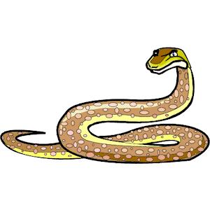 python clipart | Snake Python clipart, cliparts of Snake Python ...