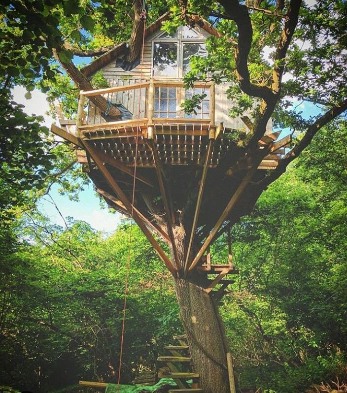 21 Unbeliavably Amazing Treehouse Ideas That Will Inspire: Pin By Shae R On Tree Houses