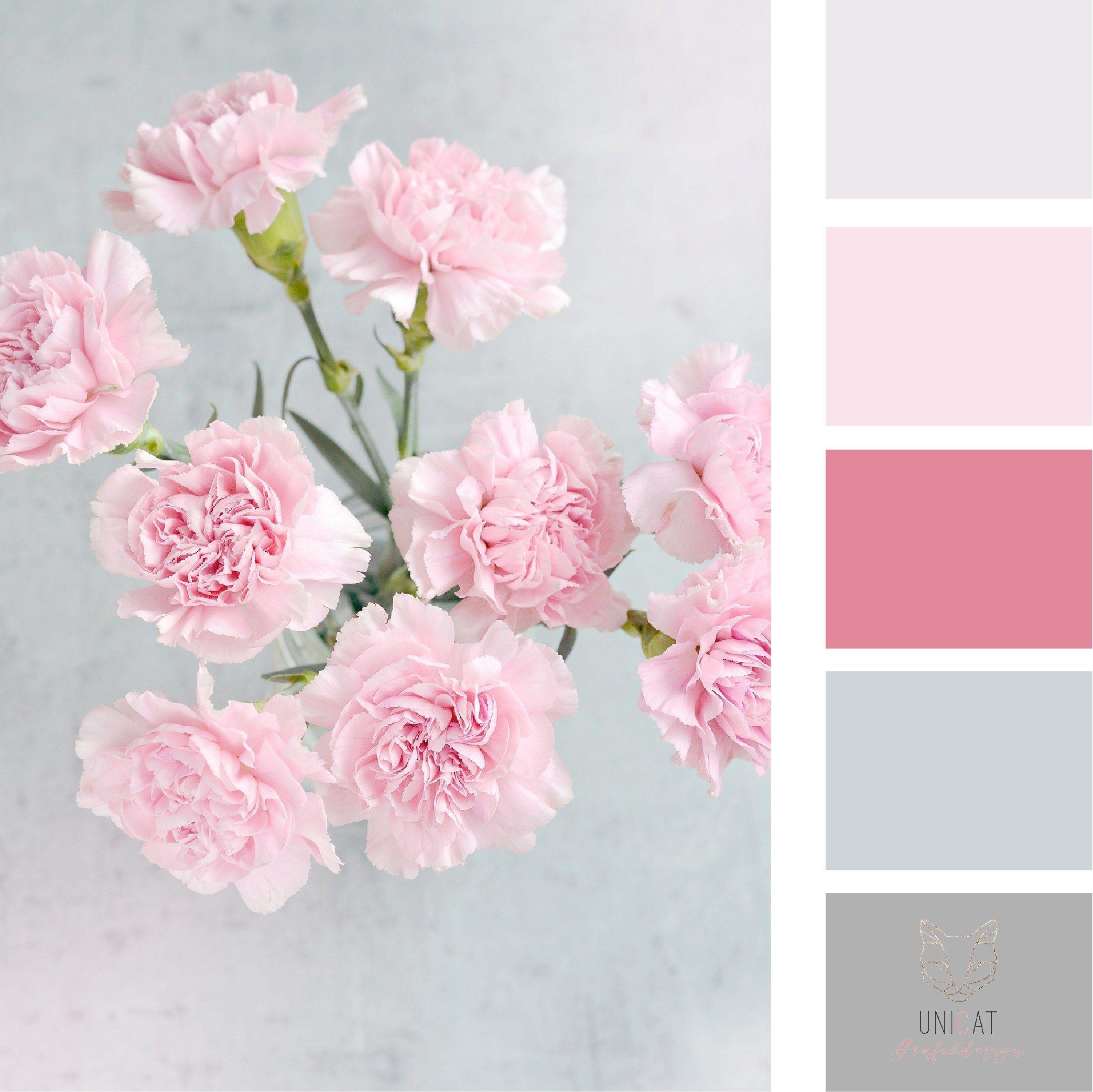 Hex Farbpalette, Farbpalette, Wohnzimmerfarben