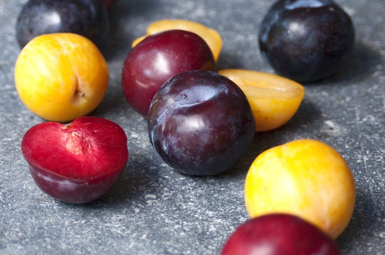 What Can I Substitute For Plums Canned Plums Plum Recipes Easy Chutney Recipe