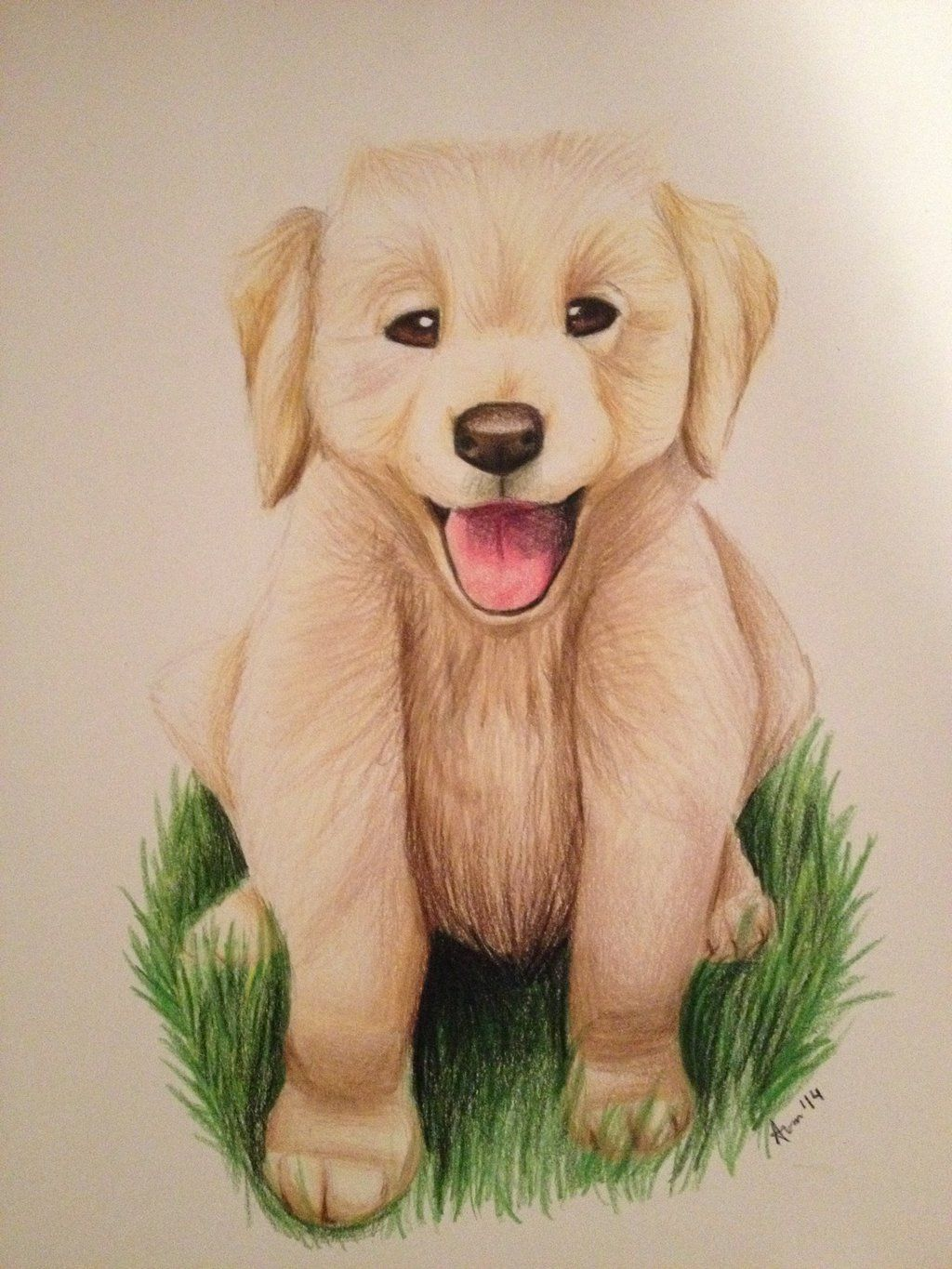 Golden Retriever Puppy By Sno Drop Deviantart Com On Deviantart