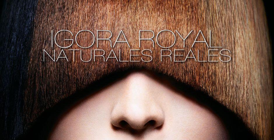 Igora Royal Colour Worlds Royal Colors Schwarzkopf Professional Royal
