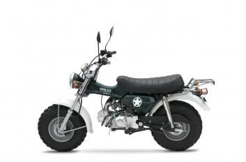 sherpa 125 pitster pro skyteam t rex motorcycle. Black Bedroom Furniture Sets. Home Design Ideas