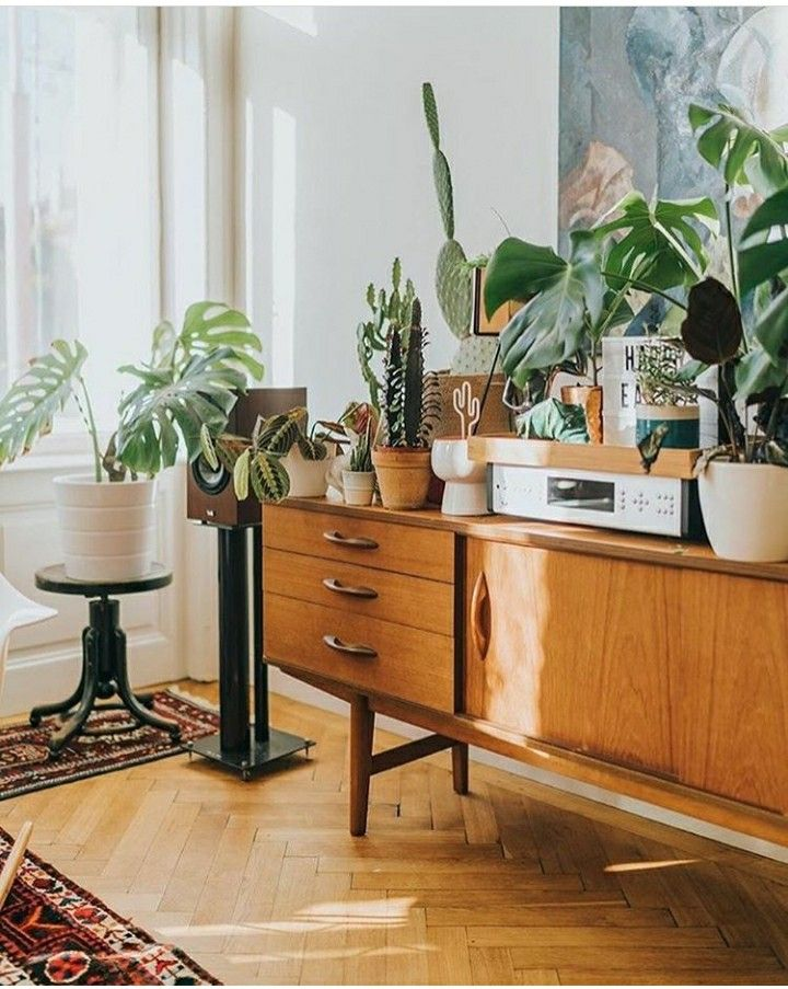 decor mid century house living room kitchen my interior architecture midcentury modern roomspiration treehouse houseplants log projects also best decoration images future bohemian homes nice houses rh pinterest