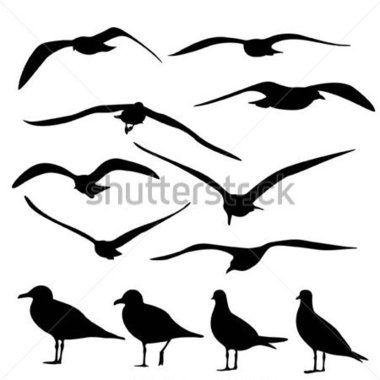Http Png Clipart Me Graphics Previews 167 Gull Silhouette Vector 167292572 Jpg Bird Silhouette Silhouette Vector Bird Art