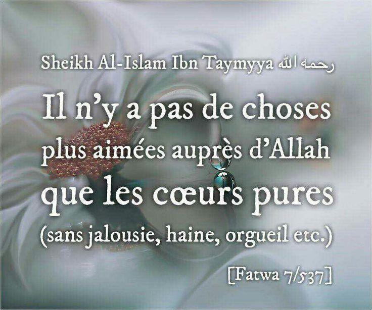 Très Image associée | Citations Islam♡Rappel♡Motivation♡Reconfort  EJ82