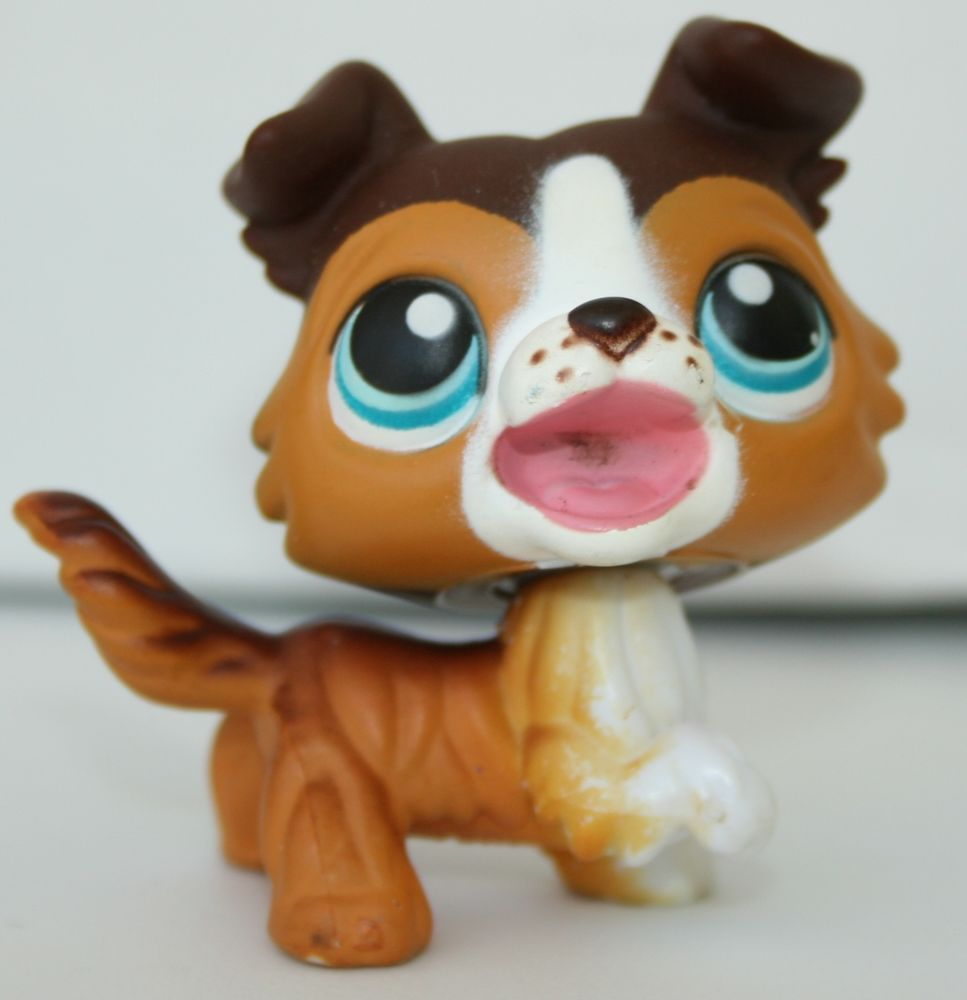 Littlest Pet Shop Lps Brown White Collie Open Mouth Blue Eyes Dog 237 Hasbro Littlest Pet Shop Pet Shop Little Pet Shop