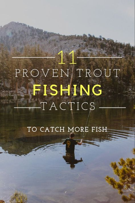 11 proven trout fishing tactics including trout fishing tips, trout fishing tricks, trout fishing b
