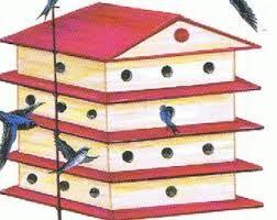 Pin en cabane d'oiseau