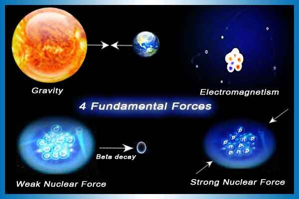 Image result for four forces of nature