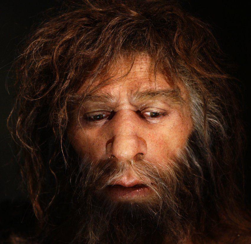 Blass Blond Blauaugig Der Neandertaler Im Modernen Menschen Menschliche Evolution Charles Darwin Neandertaler