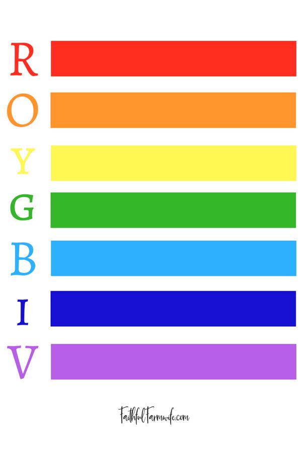 Rainbow Unit Study Resources Rainbow Colors In Order Rainbow Colors Art Rainbow Colors