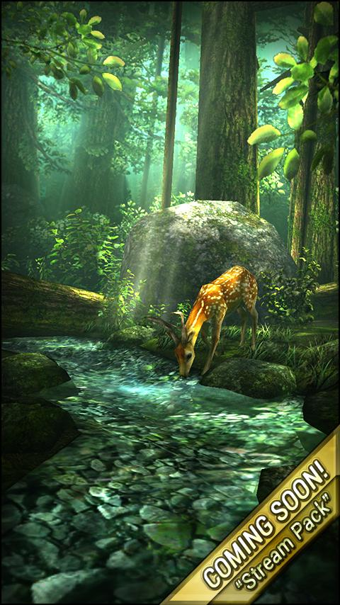 Live Wallpaper Brings The Forest To Your Homescreen Live Wallpapers Forest Homescreen