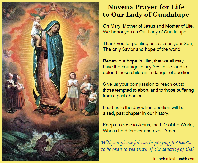 30 day prayer to blessed mother