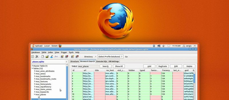 Using SQLite Manager Firefox add-on to efficiently manage