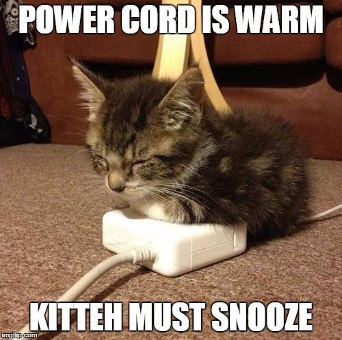 A warm kitteh is happy kitteh.
