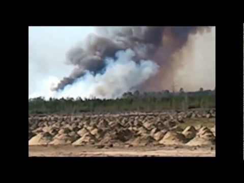 Fire Disaster, a controlled burn that got way out of control