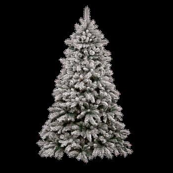 Christmas Trees Png.Pin On Inspo