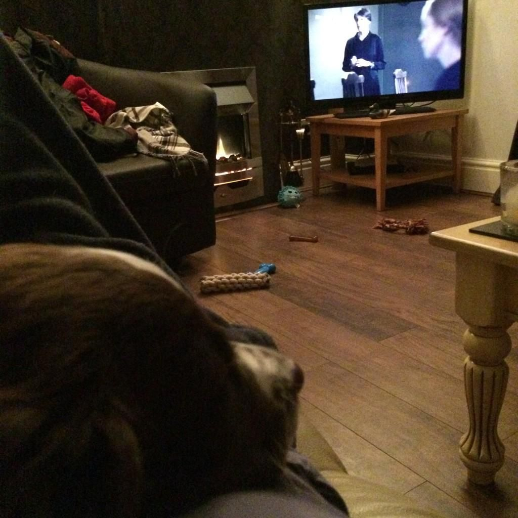 Erin Moran: Cuddled up with the pup watching @DowntonAbbey. #DowntonNight
