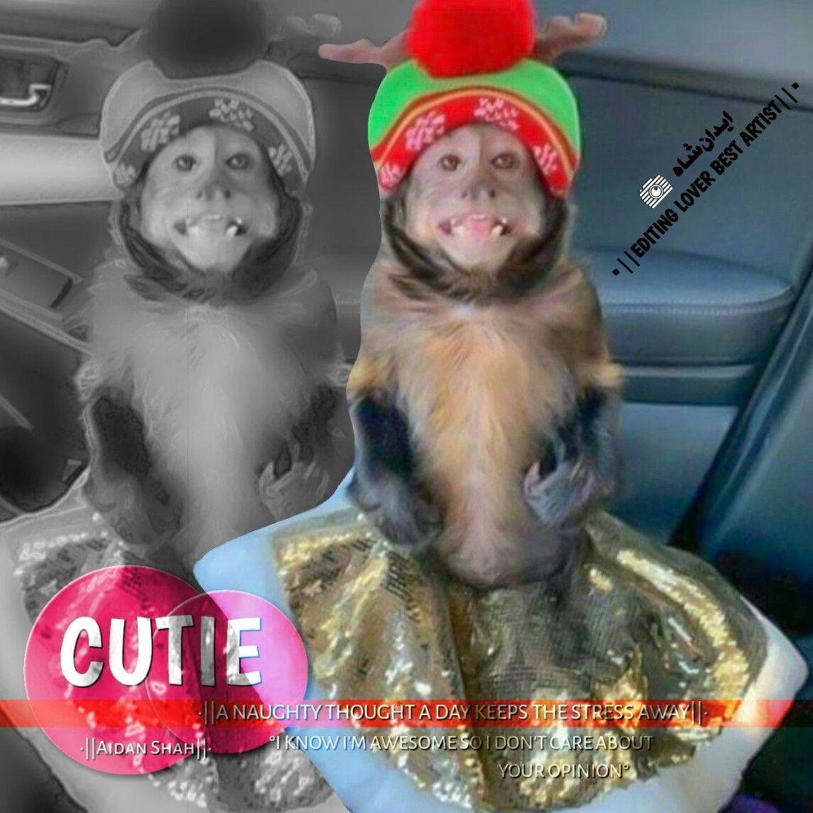 Pin By Aidan Shah On Funny Dps Cute Girl Photo Love Couple Photo Cute Kawaii Drawings